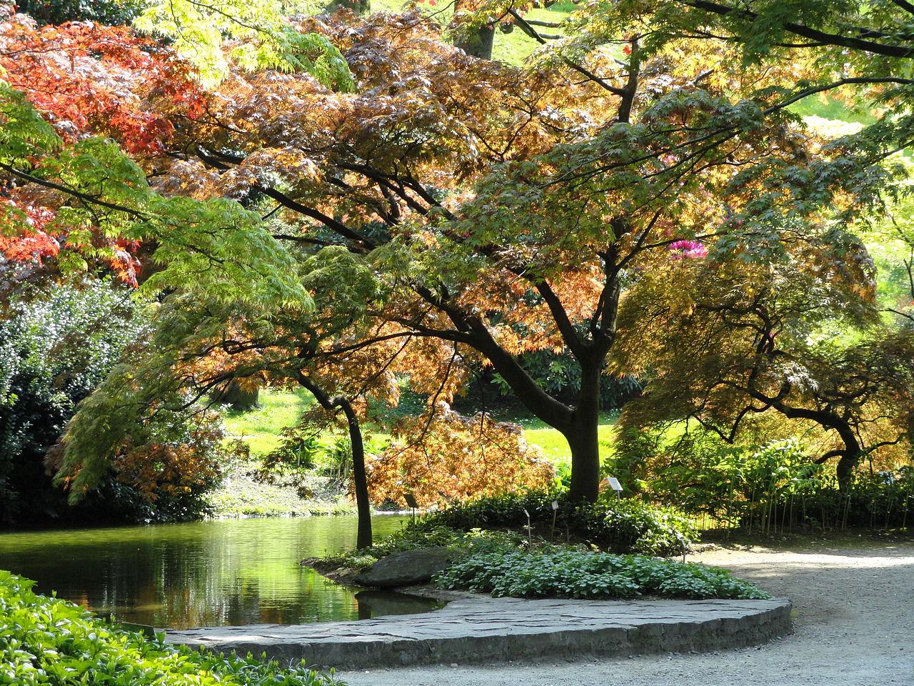 Bellagio, i giardini di Villa Melzi d'Eril