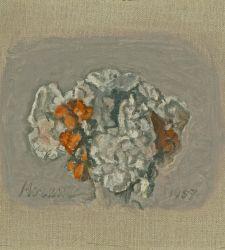 Bologna, al MAMbo una mostra sui fiori di Giorgio Morandi