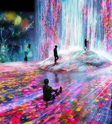 USA, Pace Gallery lancia azienda dedicata alla progettazione di spazi d'arte immersiva