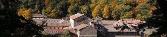 Un trekking tra arte, natura e foliage nelle Foreste Casentinesi verso Camaldoli