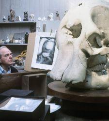 Dopo cinquant'anni torna a Firenze l'arte di Henry Moore