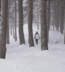 La neve rischia di scomparire per sempre. Al MUSE si indaga il rapporto uomo/natura