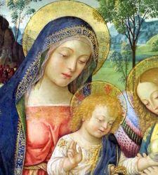 Un capolavoro di dolcezza e minuzia: la Madonna della Pace del Pinturicchio