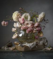 A Senigallia la personale di Cristopher Broadbent, fotografo di still life