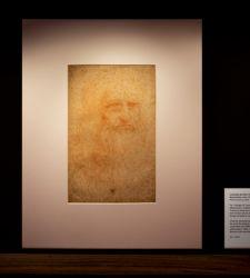 A tu per tu con Leonardo da Vinci: a Torino in mostra i disegni del genio